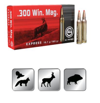 Amunicja GECO .300 WIN. MAG.  EXPRESS 10,7g /165gr