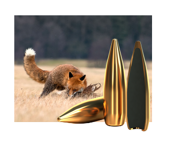 Amunicja FMJ