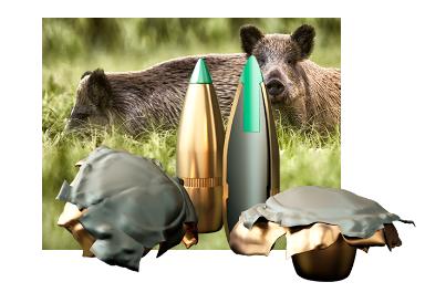 Amunicja PTS